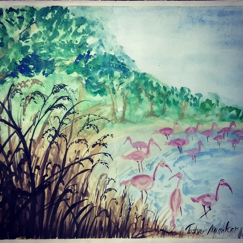 tall grass, 22 x 14 inch, tushar  amonkar,22x14inch,paper,paintings,landscape paintings,paintings for dining room,paintings for office,paintings for hotel,paintings for school,paintings for hospital,watercolor,GAL03080143220