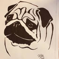 dog - pug, 8 x 13 inch, tulika sharma,8x13inch,thick paper,drawings,abstract drawings,abstract expressionism drawings,graffiti drawings,impressionist drawings,minimalist drawings,modern drawings,photorealism drawings,portrait drawings,paintings for bedroom,pen color,photo ink,GAL03091143263