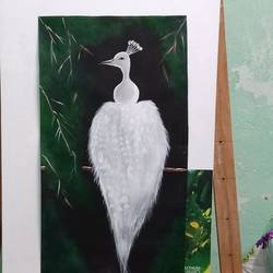 white peacock, 12 x 22 inch, kritika bagchi ,12x22inch,handmade paper,wildlife paintings,acrylic color,GAL03091043264