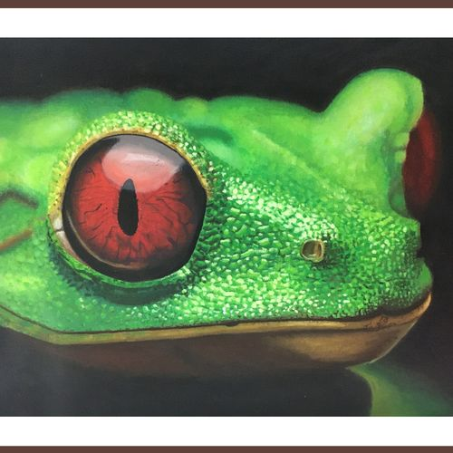 red eyed frog, 12 x 15 inch, kalyani katwa,12x15inch,canvas,paintings,wildlife paintings,realistic paintings,paintings for dining room,paintings for living room,paintings for bedroom,paintings for office,paintings for bathroom,paintings for kids room,paintings for hotel,paintings for school,acrylic color,GAL03111543567