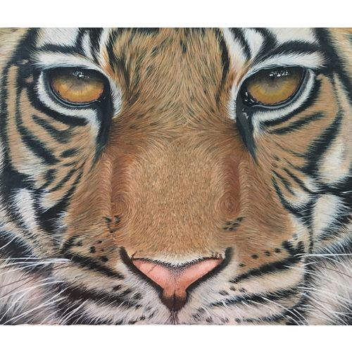 fearless , 16 x 12 inch, kalyani katwa,16x12inch,canvas,paintings,wildlife paintings,animal paintings,realistic paintings,paintings for dining room,paintings for living room,paintings for bedroom,paintings for office,paintings for bathroom,paintings for kids room,paintings for hotel,paintings for kitchen,paintings for school,paintings for hospital,acrylic color,GAL03111543570