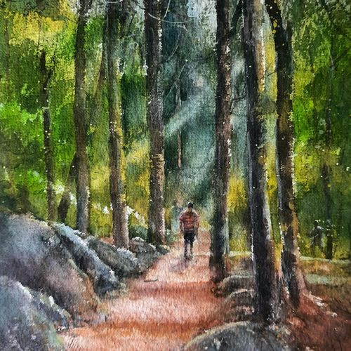 forest , 10 x 14 inch, rajendra mehta,10x14inch,handmade paper,paintings,landscape paintings,watercolor,GAL03116043636