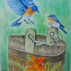 bird and nature painting, 11 x 17 inch, neha  gangal,11x17inch,ivory sheet,paintings,landscape paintings,pencil color,GAL01408643670