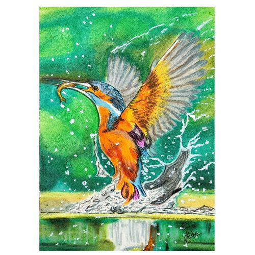 stunning picture of kingfisher catching a fish in slow motion, 7 x 10 inch, aishwarya sapar,7x10inch,drawing paper,wildlife paintings,animal paintings,realistic paintings,paintings for dining room,paintings for living room,paintings for bedroom,paintings for office,paintings for bathroom,paintings for kids room,paintings for hotel,paintings for kitchen,paintings for school,paintings for hospital,paintings for dining room,paintings for living room,paintings for bedroom,paintings for office,paintings for bathroom,paintings for kids room,paintings for hotel,paintings for kitchen,paintings for school,paintings for hospital,pastel color,GAL03128843790