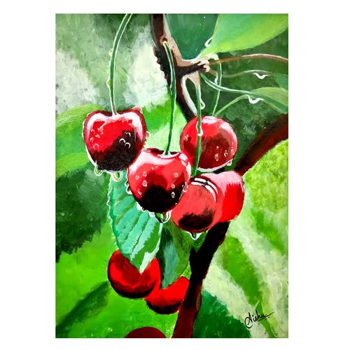 ripe cherries hanging from a cherry tree branch. water droplets on fruits, cherry orchard after the rain, 7 x 10 inch, aishwarya sapar,7x10inch,drawing paper,paintings,still life paintings,nature paintings | scenery paintings,photorealism paintings,realistic paintings,paintings for dining room,paintings for living room,paintings for bedroom,paintings for office,paintings for kids room,paintings for hotel,paintings for kitchen,paintings for school,paintings for hospital,acrylic color,GAL03128843791