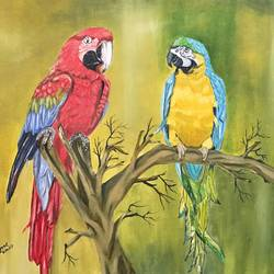 pair of parrot, 24 x 18 inch, subhash gijare,wildlife paintings,paintings for living room,canvas,oil,24x18inch,GAL01384390
