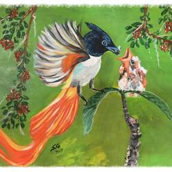 bird feeding, 11 x 8 inch, subhash gijare,wildlife paintings,paintings for living room,canvas,oil,11x8inch,GAL01384391