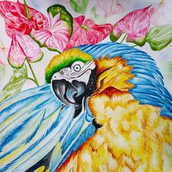 colourful beauty, 17 x 12 inch, salisalima ratha,17x12inch,brustro watercolor paper,paintings,figurative paintings,watercolor,GAL02519843947