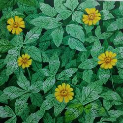 bloom, 12 x 17 inch, girish pathak,12x17inch,canson paper,flower paintings,nature paintings   scenery paintings,photorealism paintings,realistic paintings,paintings for dining room,paintings for living room,paintings for hospital,paintings for dining room,paintings for living room,paintings for hospital,watercolor,GAL02835244882