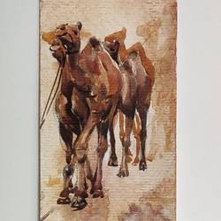 camel in desert, 4 x 13 inch, krishna  mondal ,4x13inch,paper,paintings,figurative paintings,paintings for dining room,paintings for living room,paintings for bedroom,paintings for office,paintings for bathroom,paintings for kids room,paintings for hotel,paintings for kitchen,watercolor,GAL03095445115