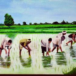 rice cultivation - konkan , 19 x 15 inch, prafulla  vanmali ,19x15inch,canvas,paintings,landscape paintings,nature paintings | scenery paintings,realistic paintings,paintings for dining room,paintings for living room,paintings for office,paintings for hotel,paintings for kitchen,acrylic color,GAL03084745282