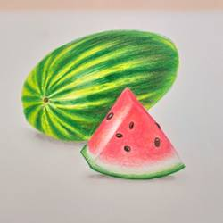 melon, 8 x 11 inch, karishma  shah,8x11inch,thick paper,drawings,fine art drawings,pencil color,GAL03011445308