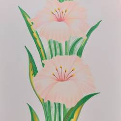 flowers , 8 x 11 inch, karishma  shah,8x11inch,thick paper,drawings,fine art drawings,pencil color,GAL03011445312