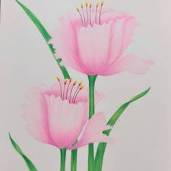 spring, 8 x 11 inch, karishma  shah,8x11inch,thick paper,fine art drawings,pencil color,GAL03011445313