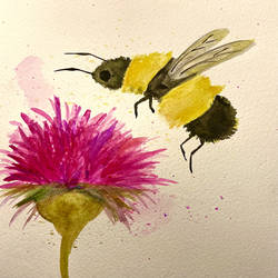 busy bee pleasure, 6 x 8 inch, anshuman anshuman,6x8inch,thick paper,paintings,flower paintings,watercolor,GAL03273945456
