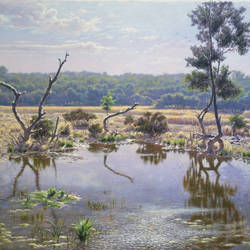 mangrove & salt water , 20 x 15 inch, sanjay  sarfare ,landscape paintings,paintings for living room,paintings,canvas,oil,20x15inch,GAL016074548