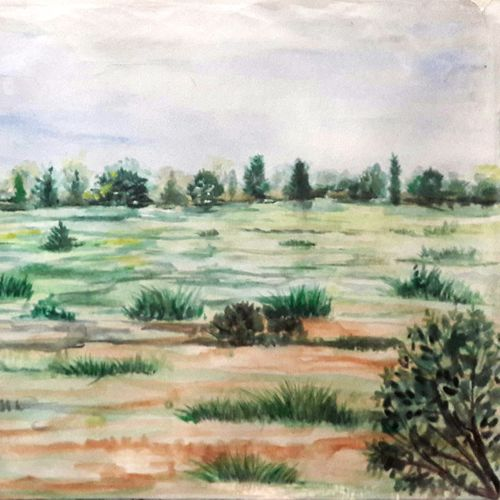 greenfield, 16 x 12 inch, anil chaurasiya,16x12inch,canvas,paintings,landscape paintings,nature paintings   scenery paintings,art deco paintings,contemporary paintings,paintings for dining room,paintings for living room,paintings for bedroom,paintings for office,paintings for bathroom,paintings for kids room,paintings for hotel,paintings for kitchen,paintings for school,paintings for hospital,watercolor,GAL0666645577