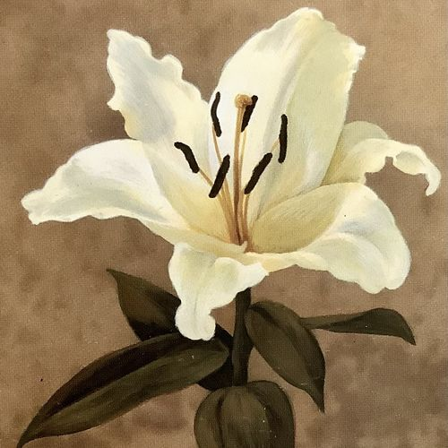 white beautiful flower (artoholic), 24 x 36 inch, artoholic p,24x36inch,canvas,paintings,flower paintings,art deco paintings,cubism paintings,expressionism paintings,illustration paintings,impressionist paintings,photorealism paintings,photorealism,realism paintings,surrealism paintings,realistic paintings,love paintings,paintings for dining room,paintings for living room,paintings for bedroom,paintings for office,paintings for kids room,paintings for hotel,paintings for kitchen,paintings for school,paintings for hospital,acrylic color,GAL02078845625