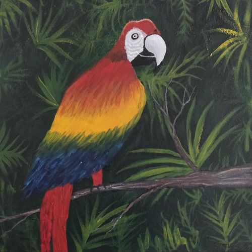 macaw parrot, 12 x 12 inch, gitika singh,12x12inch,canvas board,paintings,wildlife paintings,nature paintings | scenery paintings,art deco paintings,realism paintings,paintings for dining room,paintings for living room,paintings for bedroom,paintings for office,paintings for bathroom,paintings for kids room,paintings for hotel,paintings for school,paintings for hospital,paintings for dining room,paintings for living room,paintings for bedroom,paintings for office,paintings for bathroom,paintings for kids room,paintings for hotel,paintings for school,paintings for hospital,acrylic color,GAL01865445634