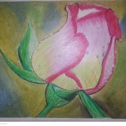 rose, 12 x 17 inch, aditya bansal,12x17inch,ivory sheet,art deco paintings,paintings for dining room,paintings for living room,paintings for bedroom,paintings for office,paintings for kids room,paintings for dining room,paintings for living room,paintings for bedroom,paintings for office,paintings for kids room,oil color,pastel color,paper,GAL02173245778