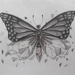 the broken butterfly, 16 x 12 inch, maria tirkey,16x12inch,drawing paper,drawings,modern drawings,graphite pencil,GAL03320646195