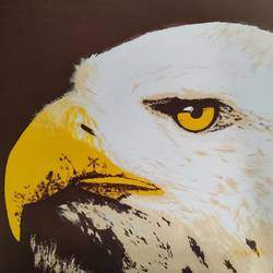 abstract eagle, 24 x 24 inch, kabir handa,24x24inch,canvas,abstract paintings,wildlife paintings,acrylic color,GAL0841946370