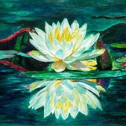 water lily, 16 x 11 inch, saroj meher,flower paintings,paintings for dining room,canson paper,watercolor,16x11inch,GAL011304641
