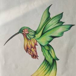 the song bird, 12 x 17 inch, anaisha patch,12x17inch,drawing paper,illustration drawings,pencil color,GAL03392446971