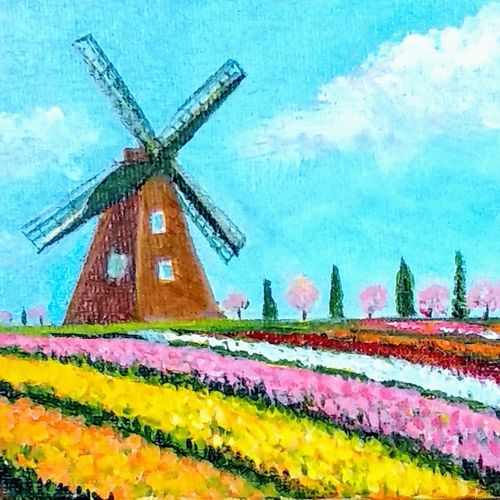 tulip fields of amsterdam, 6 x 4 inch, asha shenoy,6x4inch,canvas board,paintings,flower paintings,landscape paintings,nature paintings | scenery paintings,realistic paintings,miniature painting.,paintings for dining room,paintings for living room,paintings for office,paintings for kids room,paintings for hotel,paintings for school,paintings for hospital,acrylic color,GAL0865247114