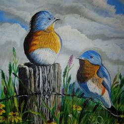 kingfisher birds, 10 x 12 inch, rupali pattnaik,10x12inch,canvas,paintings,wildlife paintings,acrylic color,GAL03411847236