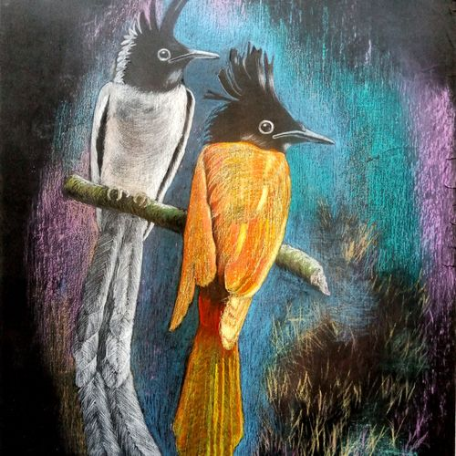 two birds, 24 x 30 inch, chinmoy pandit,24x30inch,paper,paintings,wildlife paintings,nature paintings | scenery paintings,realism paintings,paintings for dining room,paintings for living room,paintings for bedroom,paintings for office,paintings for kids room,paintings for hotel,paintings for kitchen,paintings for school,paintings for hospital,pastel color,GAL094647624