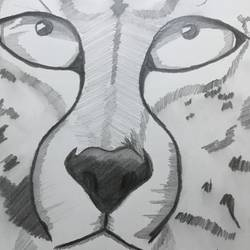 the cheetah in me, 8 x 12 inch, rohan  moorthy,expressionist drawings,paintings for living room,expressionist drawings,wildlife paintings,drawing paper,pencil color,8x12inch,GAL016884834