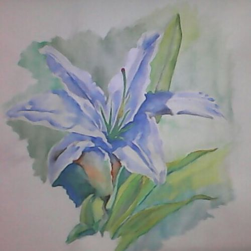 white lily, 15 x 16 inch, pubali  chakraborty,flower paintings,paintings for bedroom,cartridge paper,watercolor,15x16inch,GAL018025000