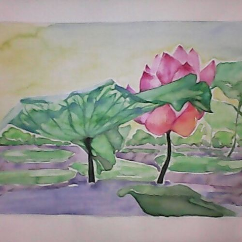 the lotus pond, 16 x 12 inch, pubali  chakraborty,flower paintings,paintings for living room,cartridge paper,watercolor,16x12inch,GAL018025003