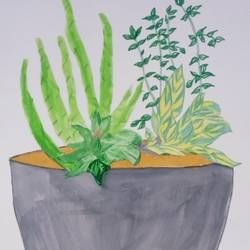 plant stand, 9 x 11 inch, mrs. kalyani lahon,realistic paintings,paintings for living room,drawing paper,watercolor,9x11inch,GAL06575060