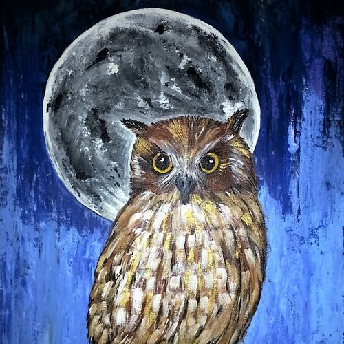 moonlit owl, 18 x 24 inch, neeraj raina,abstract paintings,paintings for bedroom,canvas,acrylic color,18x24inch,GAL0273511