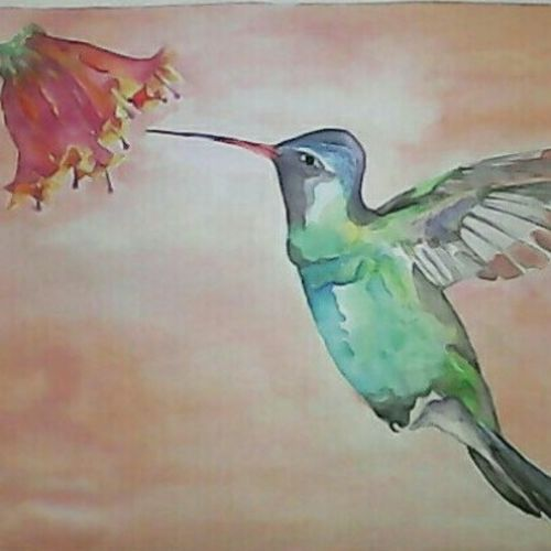 pollinator, 14 x 11 inch, pubali  chakraborty,wildlife paintings,paintings for living room,cartridge paper,watercolor,14x11inch,GAL018025256