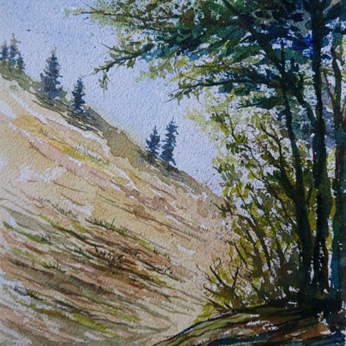 summer nature, 8 x 12 inch, mahendra shewale,nature paintings,paintings for living room,handmade paper,watercolor,8x12inch,GAL018725429Nature,environment,Beauty,scenery,greenery