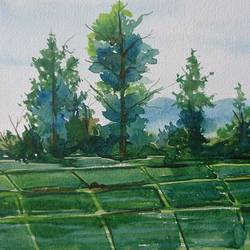 green farm , 14 x 10 inch, mahendra shewale,paintings for living room,nature paintings,handmade paper,watercolor,14x10inch,GAL018725459Nature,environment,Beauty,scenery,greenery