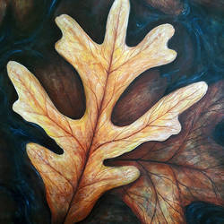 floating leaves, 24 x 30 inch, seby augustine,nature paintings,paintings for living room,canvas,acrylic color,24x30inch,GAL01505640Nature,environment,Beauty,scenery,greenery