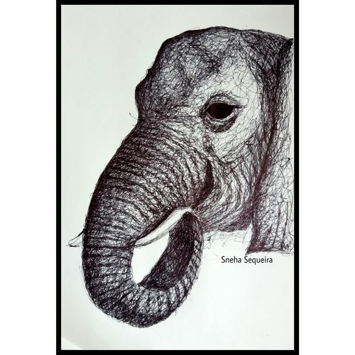 scribbled elephant , 10 x 14 inch, sneha sequeira ,figurative drawings,paintings for living room,drawing paper,ball point pen,10x14inch,GAL021535846