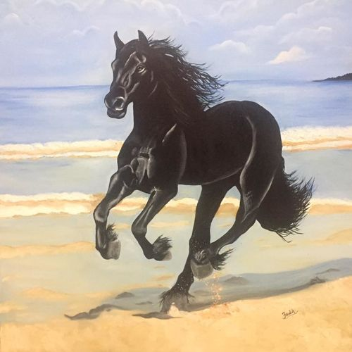 black horse, 36 x 36 inch, faazilah ahmed,wildlife paintings,paintings for office,horse paintings,canvas,oil paint,36x36inch,GAL022816121
