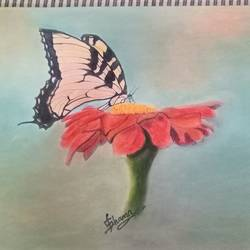 flower and butterfly, 12 x 16 inch, shama harsolia,nature paintings,paintings for bedroom,paper,pencil color,12x16inch,GAL023026234Nature,environment,Beauty,scenery,greenery