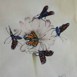 butterflies , 8 x 8 inch, priyamvada  agarwal ,nature paintings,paintings for living room,cartridge paper,poster color,8x8inch,GAL024196345Nature,environment,Beauty,scenery,greenery,butterflies,flowers