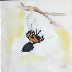butterflies , 8 x 8 inch, priyamvada  agarwal ,paintings,nature paintings,paintings for living room,cartridge paper,mixed media,8x8inch,GAL024196347Nature,environment,Beauty,scenery,greenery,butterfly,
