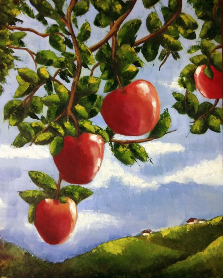 apples, 16 x 20 inch, malvika awasthi,nature paintings,paintings for dining room,canvas,oil,16x20inch,GAL023976356Nature,environment,Beauty,scenery,greenery