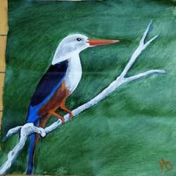 kingfisher, 12 x 13 inch, madhulika sharma,wildlife paintings,paintings for living room,canvas,acrylic color,12x13inch,GAL024806483