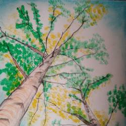 trees, 16 x 10 inch, vp singh,landscape paintings,paintings for office,cartridge paper,pencil color,16x10inch,GAL024886504