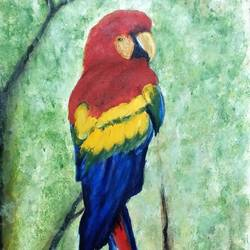 ms  - parrot, 12 x 24 inch, madhulika sharma,wildlife paintings,paintings for living room,canvas,acrylic color,12x24inch,GAL024806510
