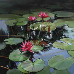 waterlilies, 24 x 16 inch, krishnapada paul,flower paintings,paintings for bedroom,canvas,acrylic color,24x16inch,GAL026456821
